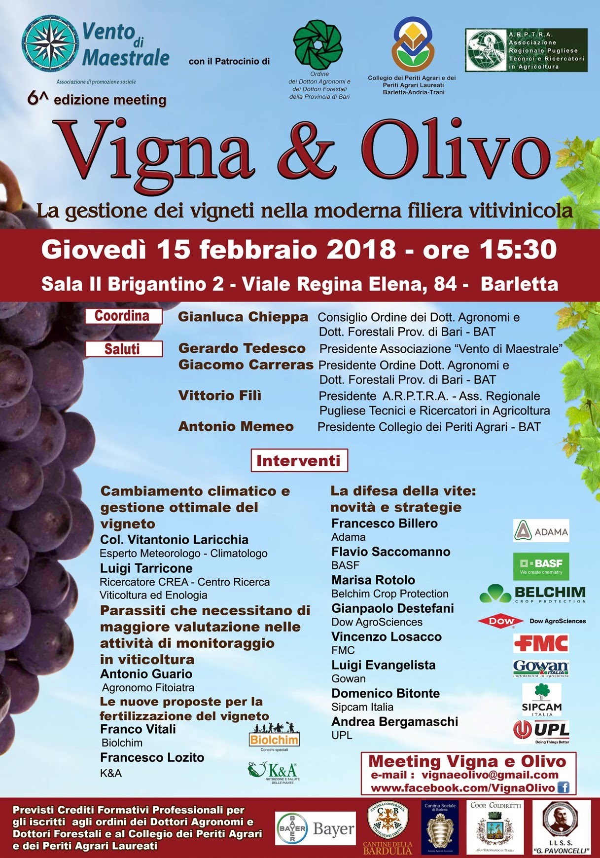 Vigna e olivo