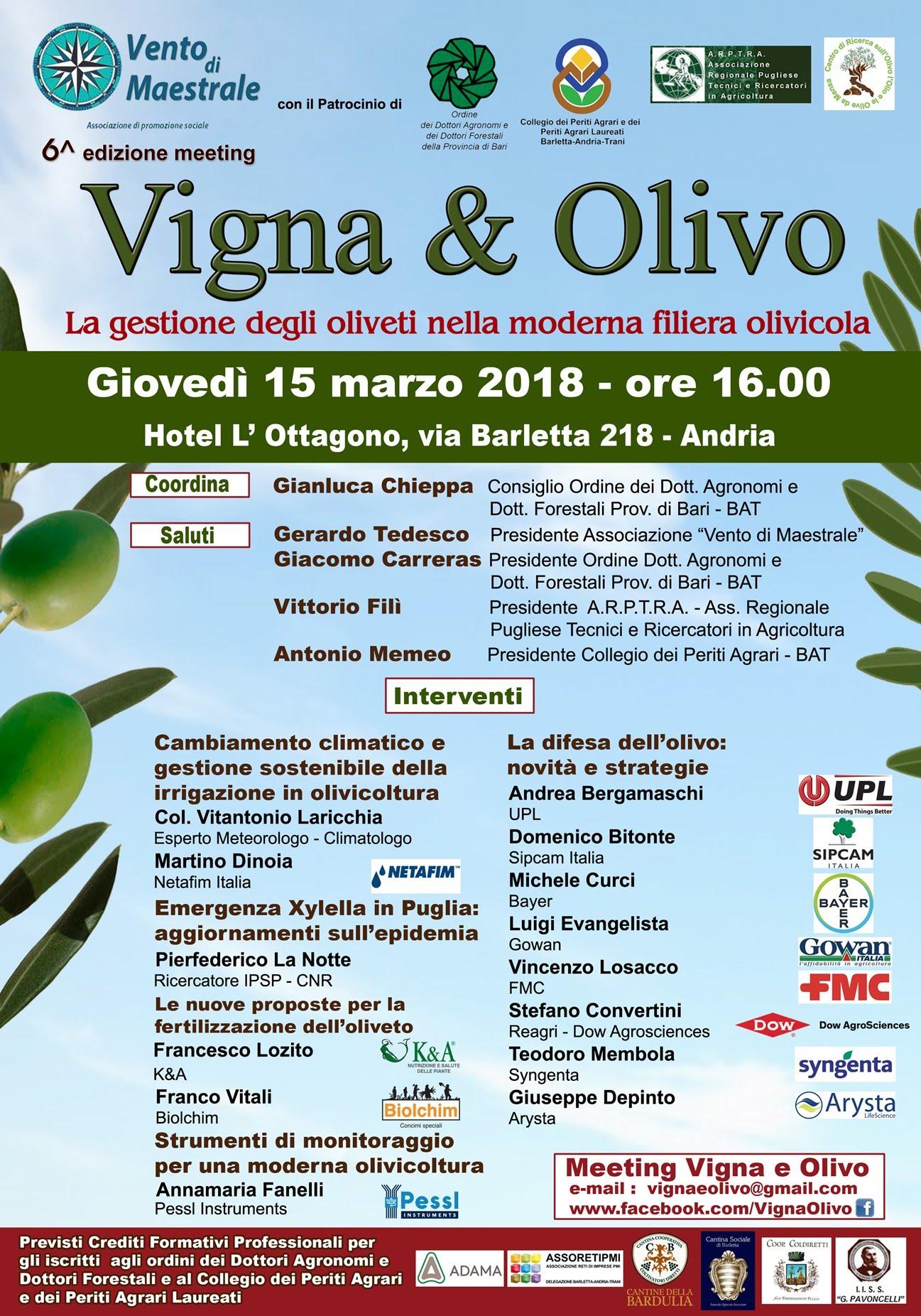 Vigna & Olivo Andria 2018